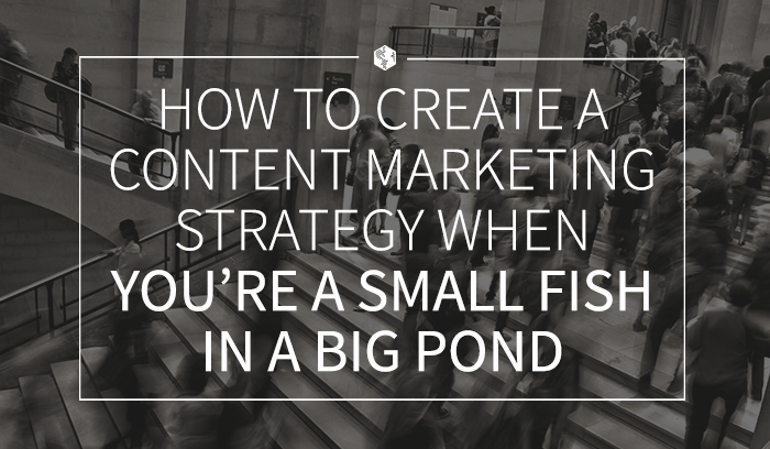 How to Create a Content Marketing Strategy When You're a Small Fish in a Big Pond (1).png