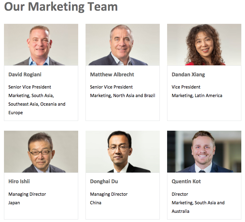 An example of a diverse marketing team.